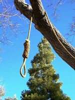 Lynch mob noose