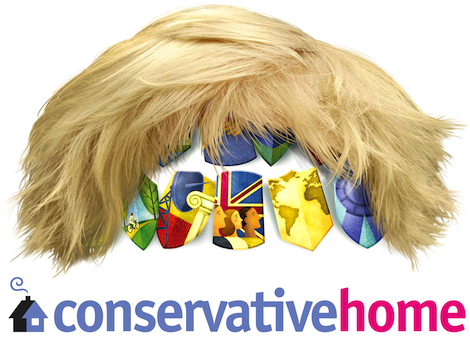 C-HOME BORIS HAIR MASTHEAD copy