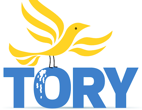 Libdem bird vs TORY