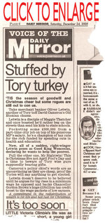 Stuffedbytoryturkey